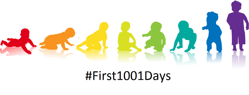 First1001days logo small